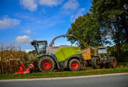 September Mais Hakselen